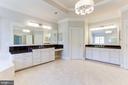 Light Filled Owner's Suite - 16323 HUNTER PL, LEESBURG