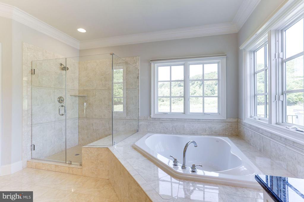 Owner's Bath with Brand New Frameless Glass Door - 16323 HUNTER PL, LEESBURG