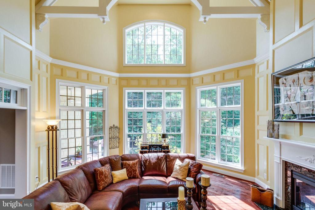 Walls of Windows  with Extensive Moldings - 40947 GRENATA PRESERVE PL, LEESBURG