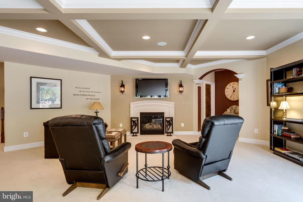 Enjoy a little TV watching here ! - 40947 GRENATA PRESERVE PL, LEESBURG