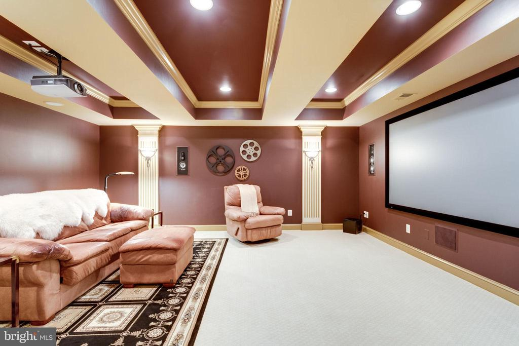Popcorn Anyone? Media Room - 40947 GRENATA PRESERVE PL, LEESBURG