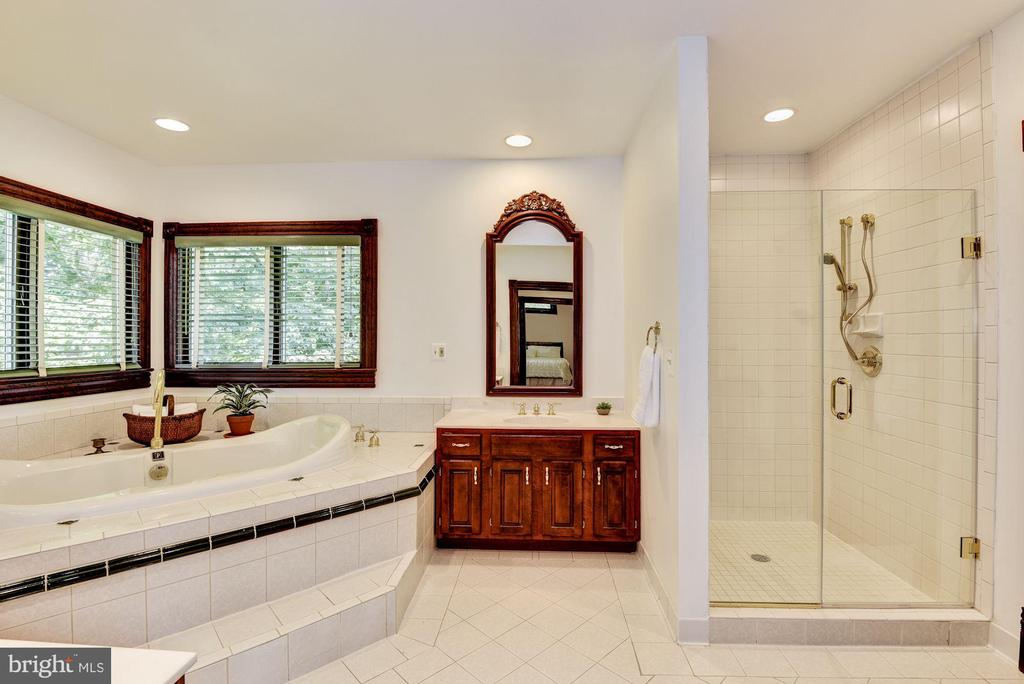 Master bath with jetted tub and large shower - 11019 KENILWORTH AVE, GARRETT PARK