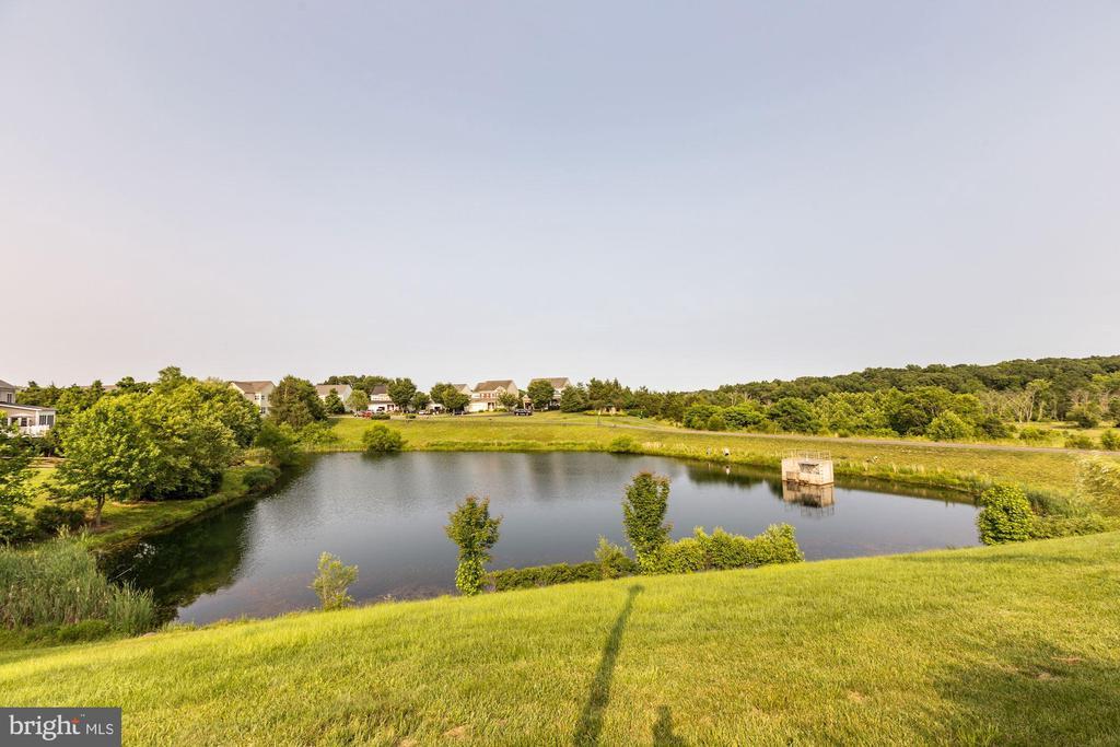 Pond behind home. - 8823 BARN OWL CT, GAINESVILLE