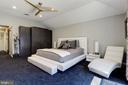 Oversized Master Suite - 905 N HOWARD ST, ALEXANDRIA