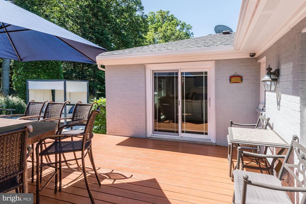 Outdoor Kitchen Area - 905 N HOWARD ST, ALEXANDRIA