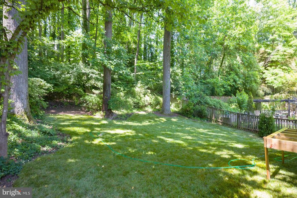glorious back yard shaded by mature trees, shurbs - 2320 N VERNON ST, ARLINGTON