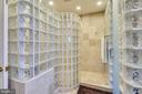 Master  Shower- 3 shower heads/4 body sprays - 43483 FIRESTONE PL, LEESBURG