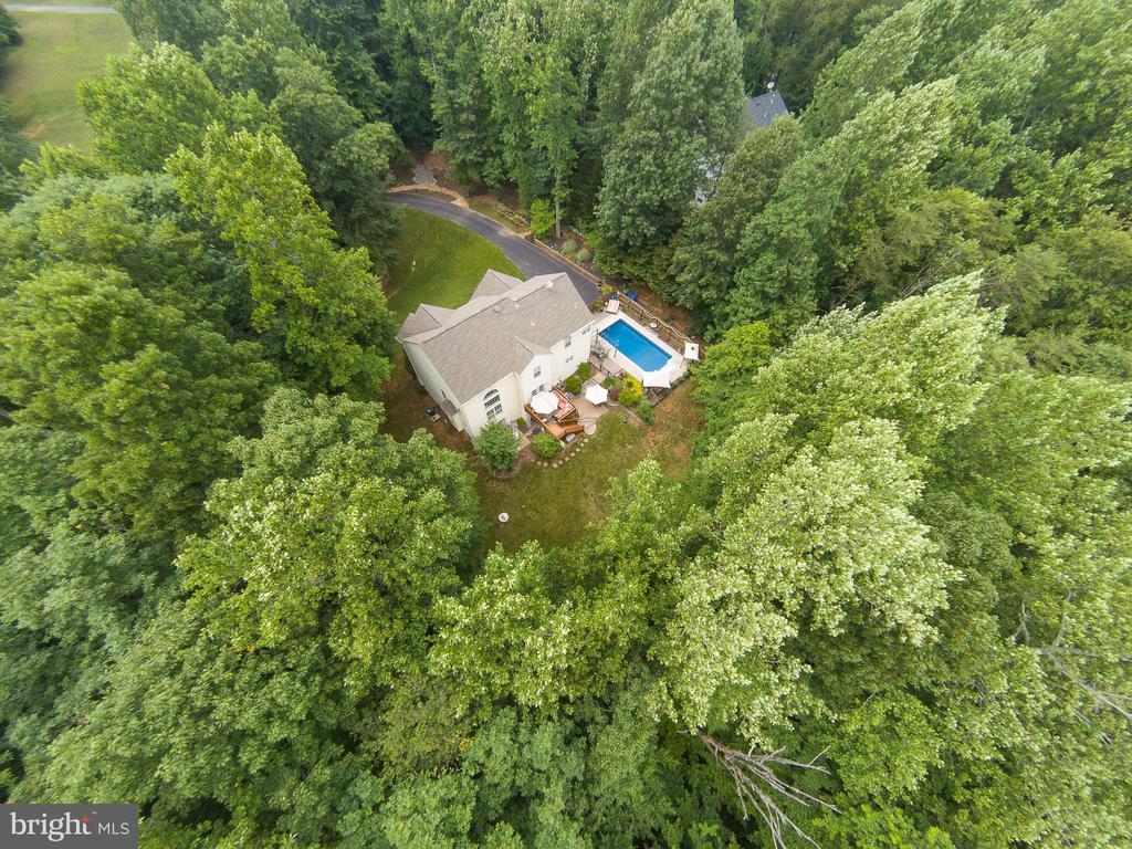 Surrounded by trees - 25 SMITH LAKE DR, STAFFORD