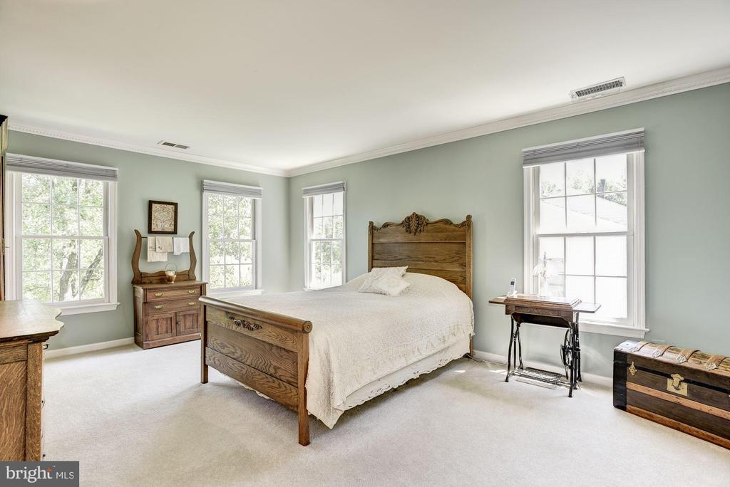 Natural Light Filled Master Bedroom - 21099 RAINTREE CT, ASHBURN