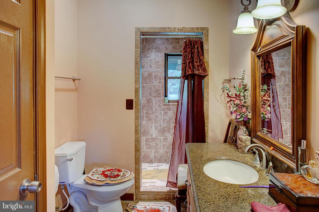 Master bedroom 2 full bath - 34876 PAXSON RD, ROUND HILL
