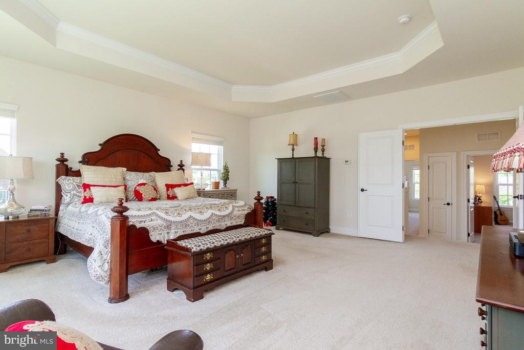 Upper Level Luxury Master Bedroom - 42463 MADTURKEY RUN PL, CHANTILLY