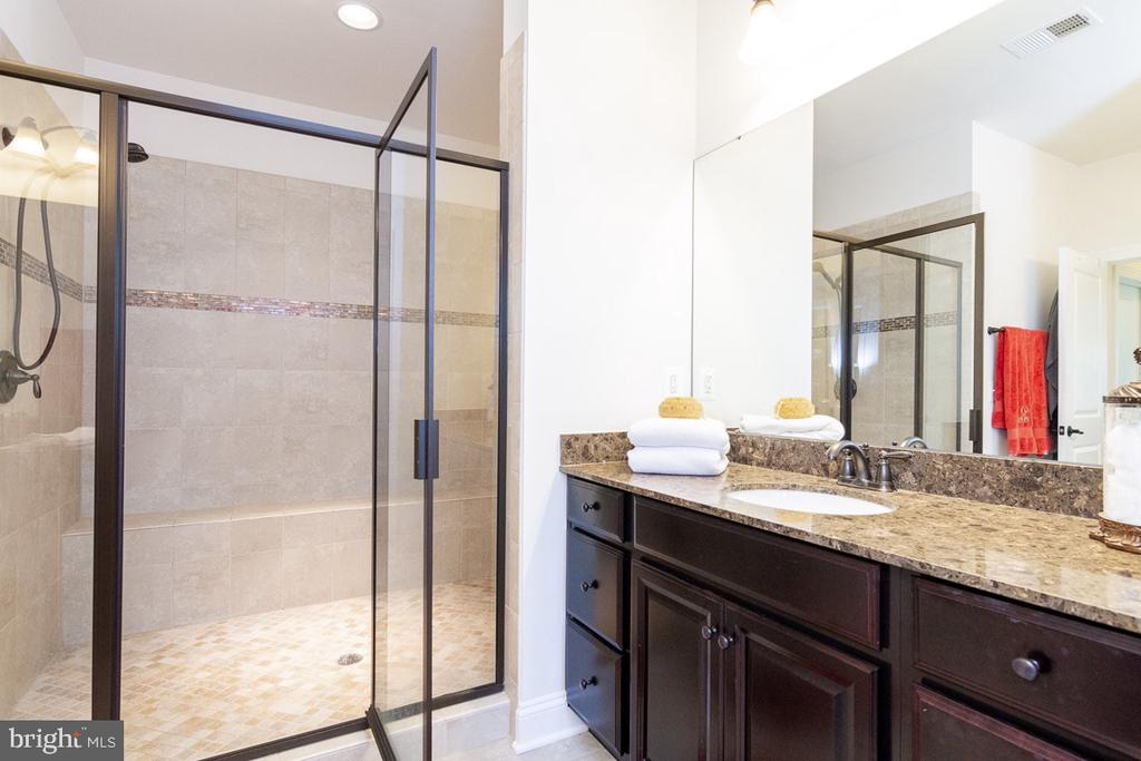 Upper Level Luxury Masterbath - 42463 MADTURKEY RUN PL, CHANTILLY