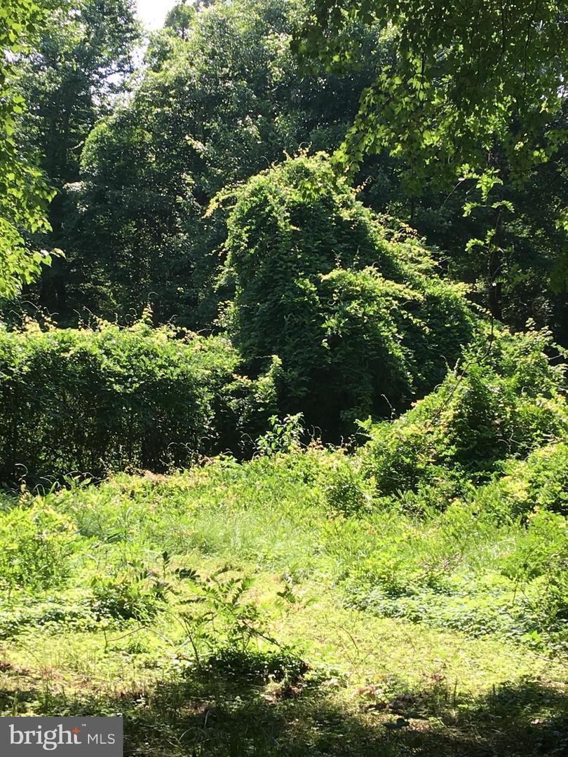 Property per Vendita alle ore Tall Timbers, Maryland 20690 Stati Uniti