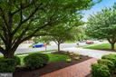 Planting Beds & Mature Trees in Lovely Front Yard - 20985 NIGHTSHADE PL, ASHBURN