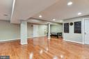 Light and Bright Lower Level - 20985 NIGHTSHADE PL, ASHBURN