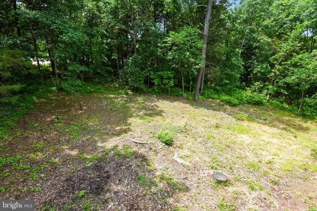 Wooded Lot backs to Community Trail - 20985 NIGHTSHADE PL, ASHBURN