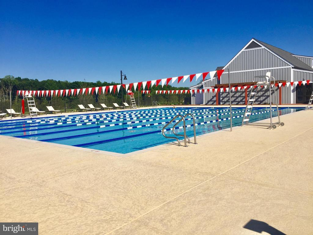 The pool opens next week. There are two! - 17152 GULLWING DR, DUMFRIES