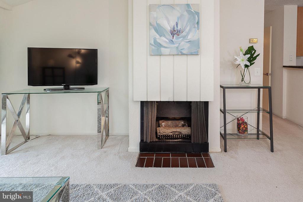 Fireplace - 60 S VAN DORN ST #514, ALEXANDRIA