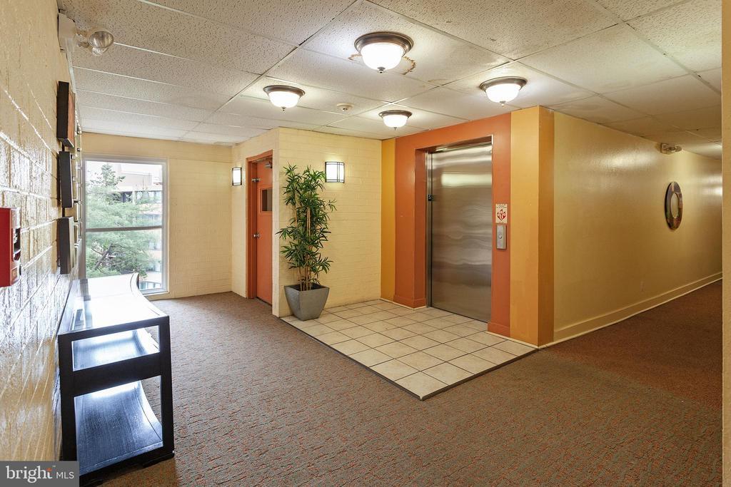 Hallway - 60 S VAN DORN ST #514, ALEXANDRIA