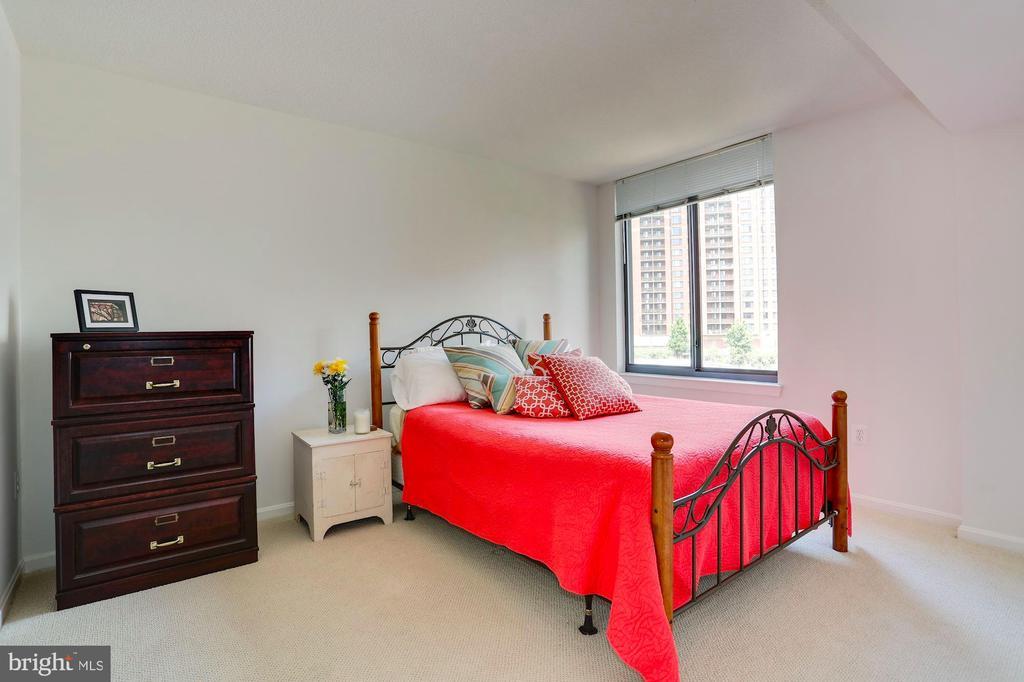 Large East facing Master bedroom. - 2220 FAIRFAX DR #807, ARLINGTON