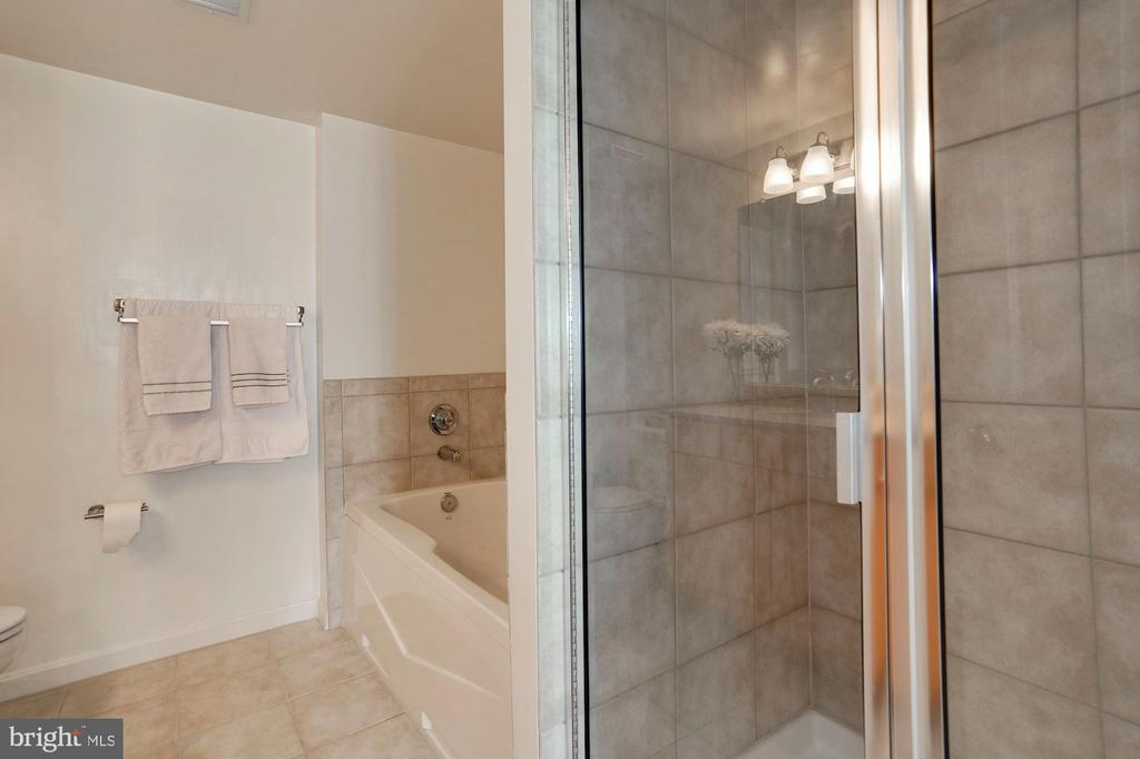Stand up shower and soaking tub. - 2220 FAIRFAX DR #807, ARLINGTON