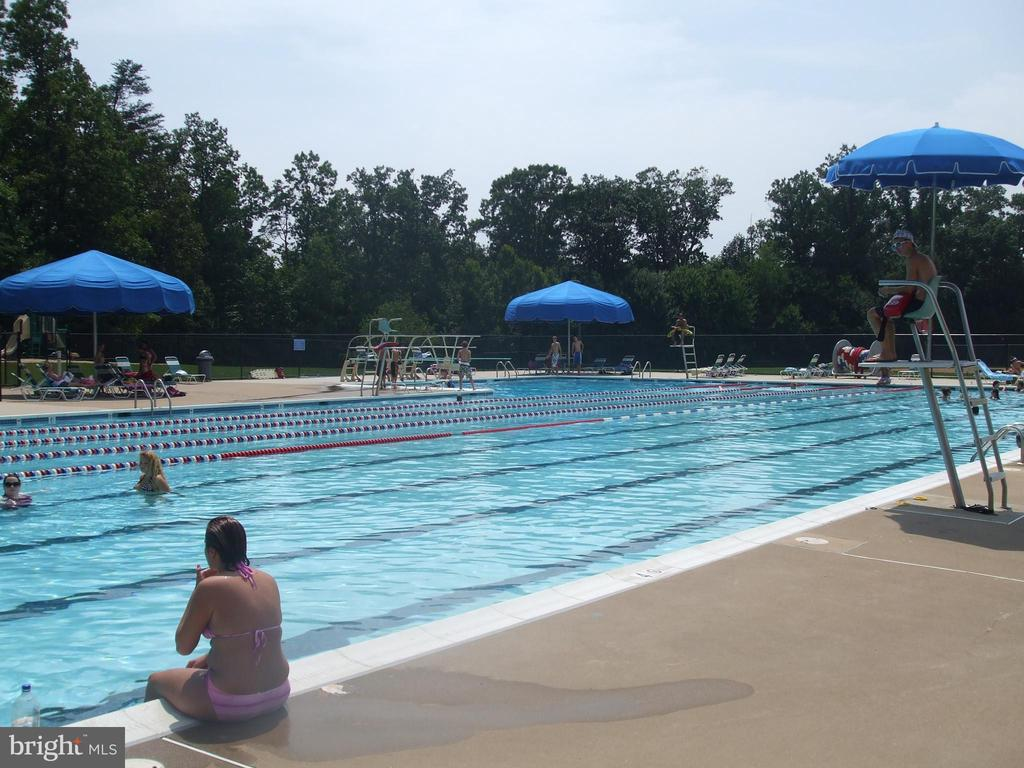 Community Pool - Lake Newport - 1560 TWISTED OAK DR, RESTON