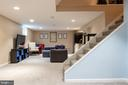 Lower Level - 9334 BOOTHE ST, ALEXANDRIA