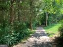 Reston Walking Path in back through the woods - 1560 TWISTED OAK DR, RESTON