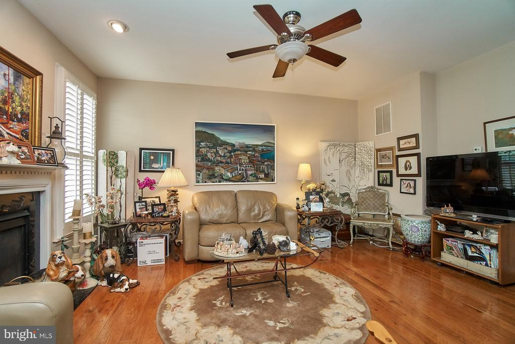 Ceiling Fan Too - 5642 WHEELWRIGHT WAY, HAYMARKET