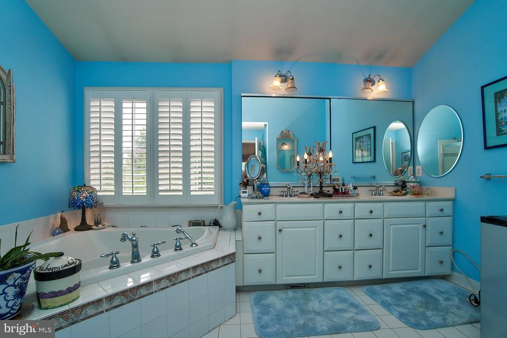 Master Bathroom - 5642 WHEELWRIGHT WAY, HAYMARKET