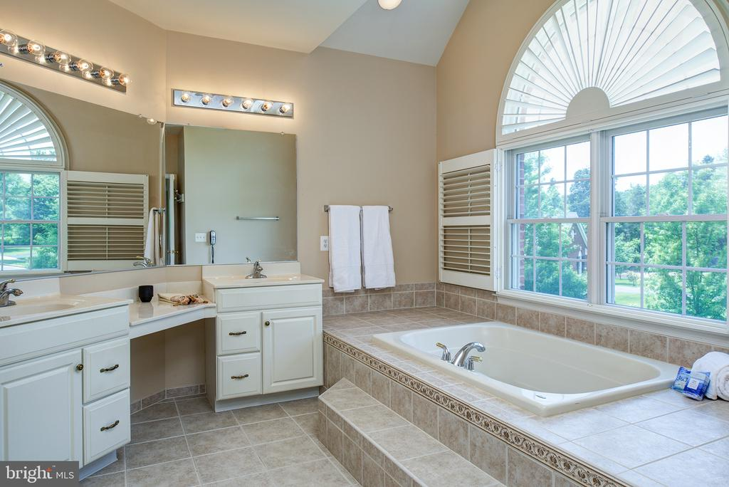 Step-up tub and beautiful palladian window! - 43872 ASHLAWN CT, ASHBURN