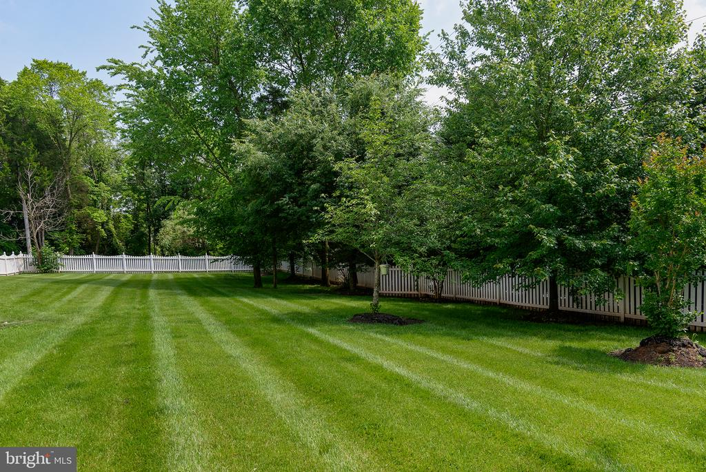 Stunning, sprawling back yard! - 43872 ASHLAWN CT, ASHBURN