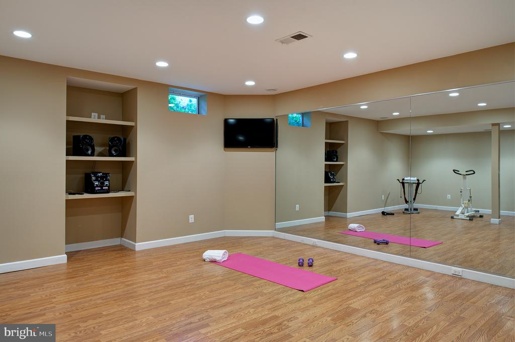 Huge workout area/gym! No excuses! - 43872 ASHLAWN CT, ASHBURN