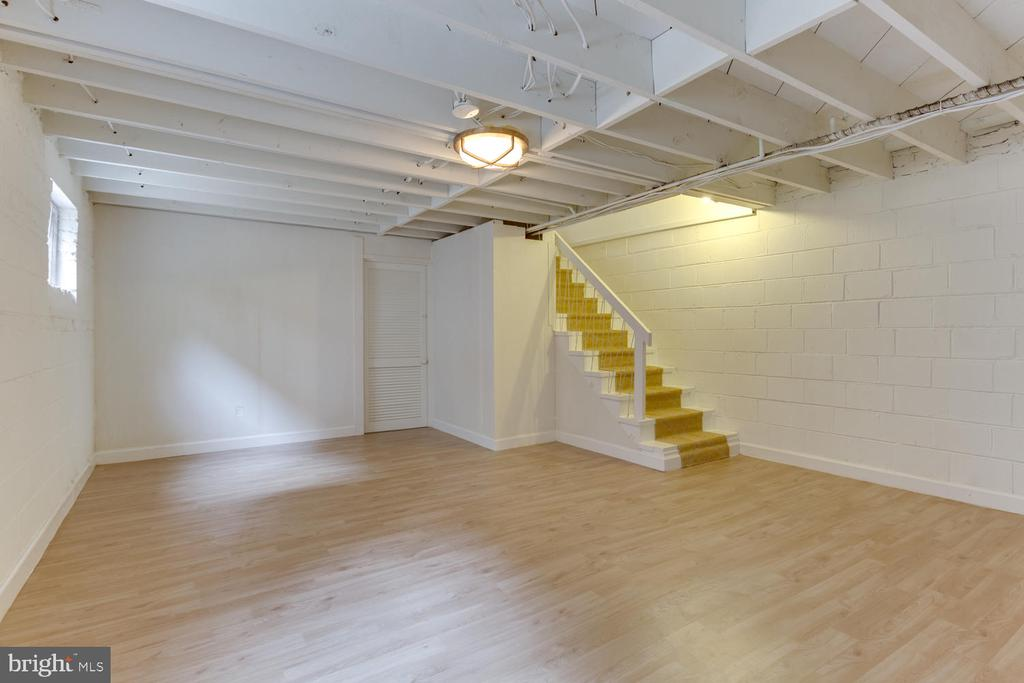Light and Bright - finished area of Basement - 11-1/2 E MYRTLE ST, ALEXANDRIA