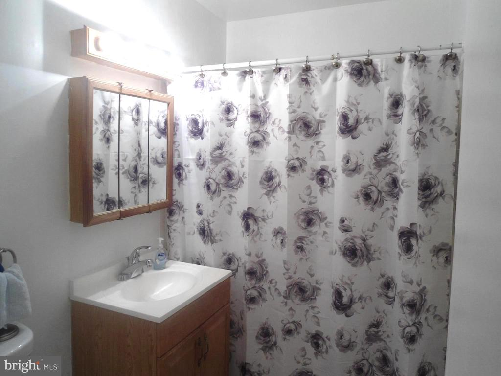 Hall Bath - 3814 PORT HOPE PT, TRIANGLE