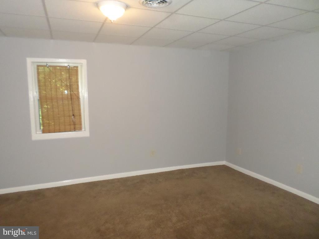 Basement Den/Fam Room