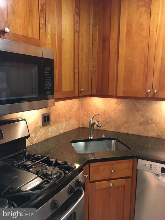 Gourmet Kitchen - 1121 ARLINGTON BLVD #808, ARLINGTON