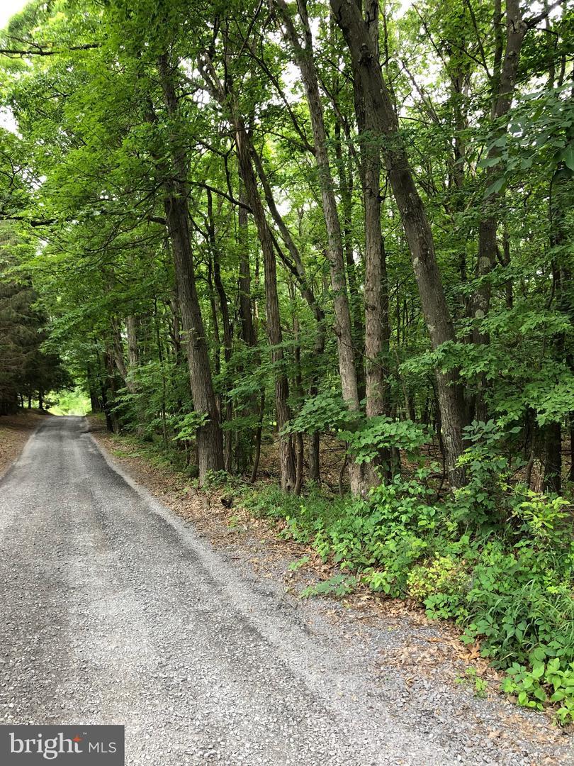 Land for Sale at Swaim Ln Berkeley Springs, West Virginia 25411 United States