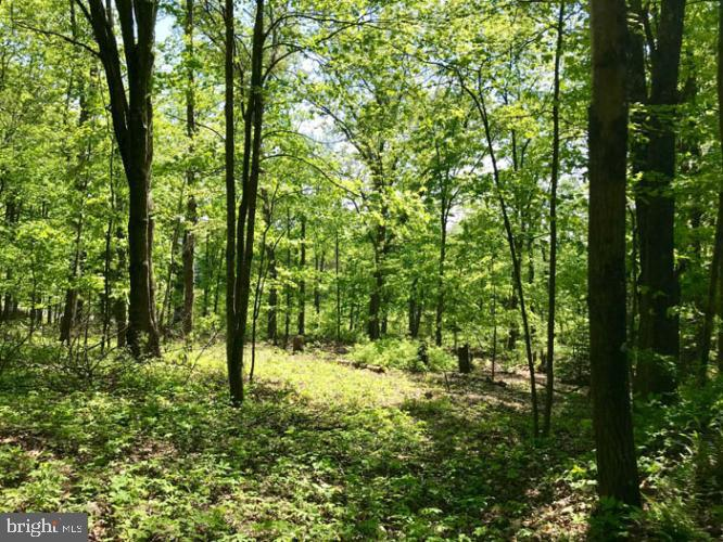 Land for Sale at Ickesburg, Pennsylvania 17037 United States