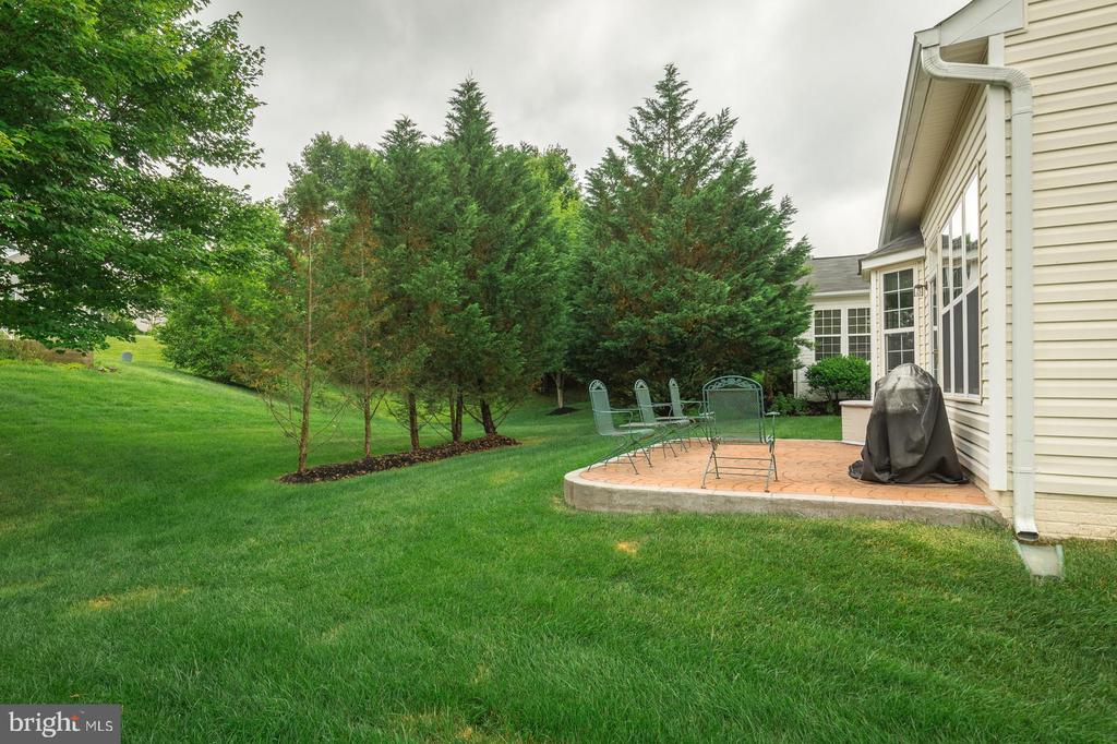 Patio and trees - 3944 SOLSTICE LN, DUMFRIES