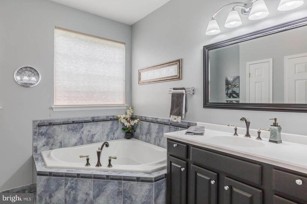 Master Bath Soaking Tub & Vanity - 3944 SOLSTICE LN, DUMFRIES