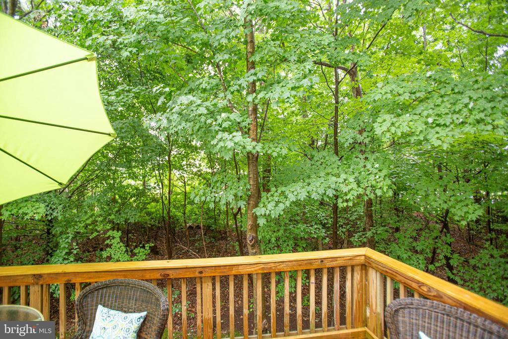 A quiet cup of coffee in the dappled sunshine - 8539 BERTSKY LN, LORTON