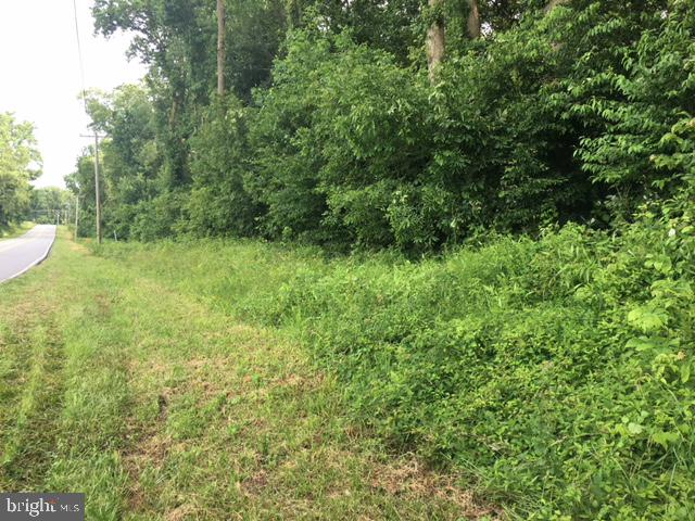 Land for Sale at Centreville, Maryland 21617 United States