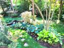 Delightful walking pathways - 4412 WALSH ST, CHEVY CHASE