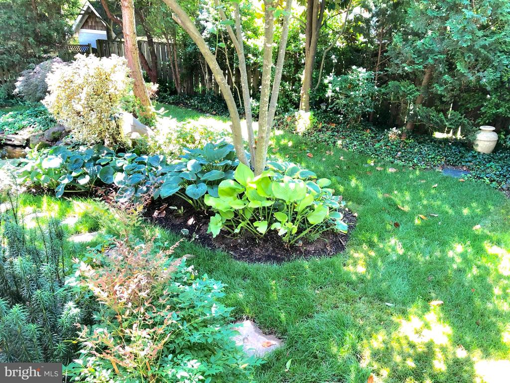 Private backyard oasis - 4412 WALSH ST, CHEVY CHASE