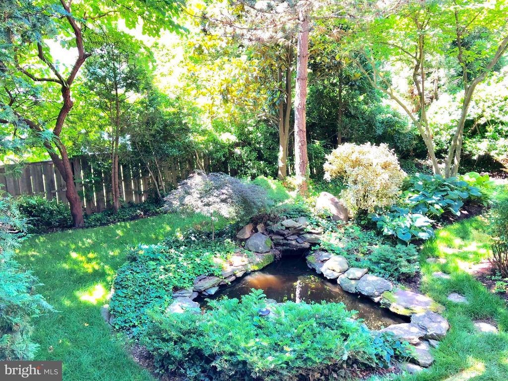 Pond with lush landscaping - 4412 WALSH ST, CHEVY CHASE