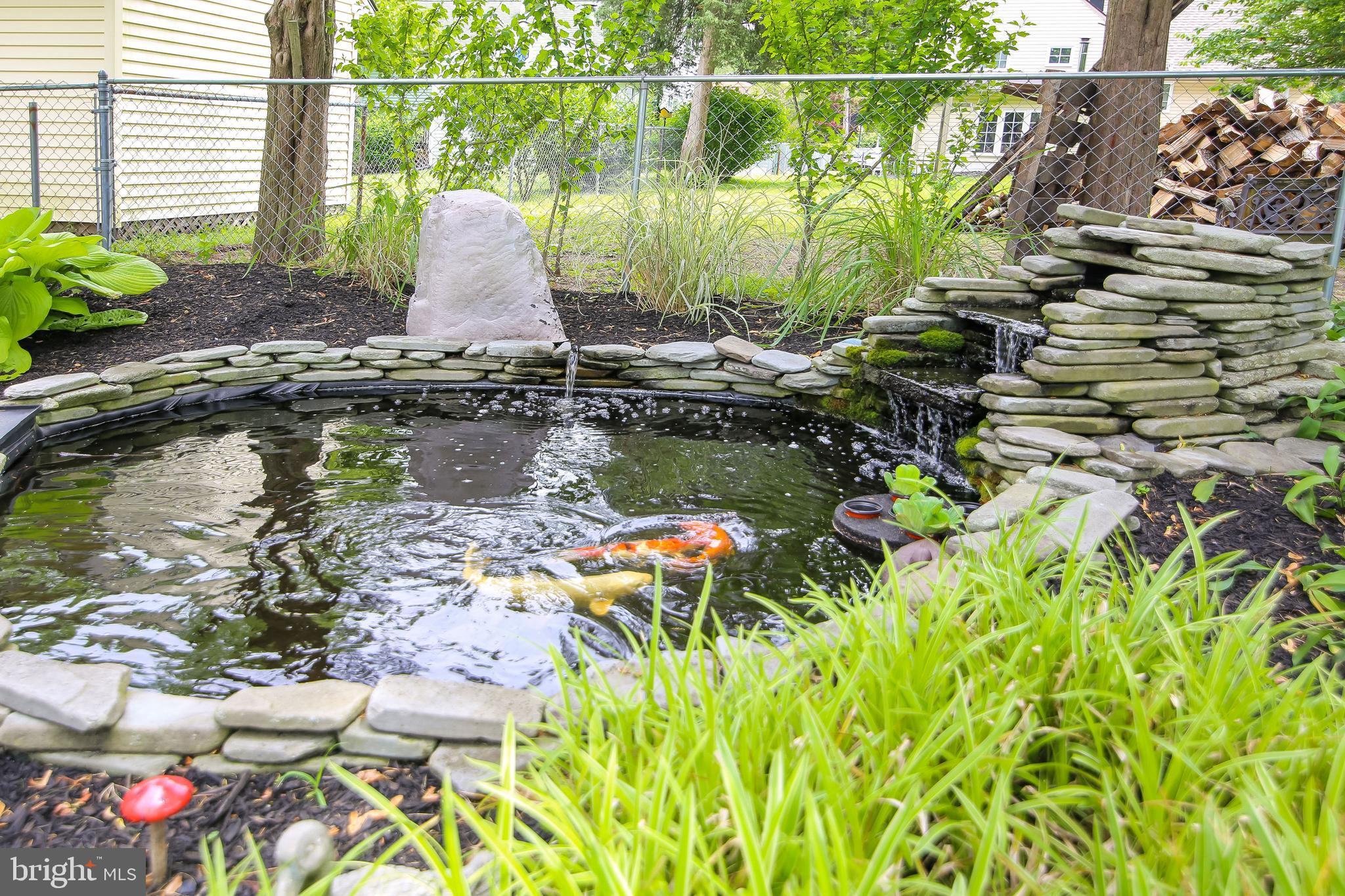 Wonderful Koi Pond.
