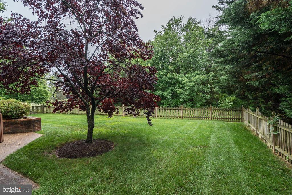 View from patio - 43131 WEATHERWOOD DR, ASHBURN