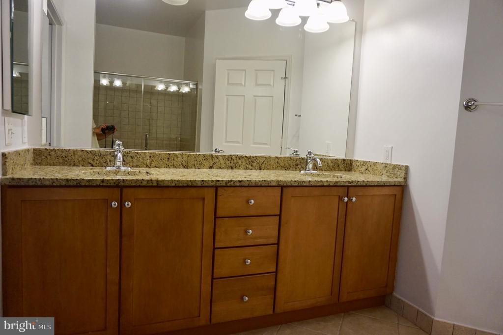 Master bath vanity - 11750 OLD GEORGETOWN RD #2135, ROCKVILLE