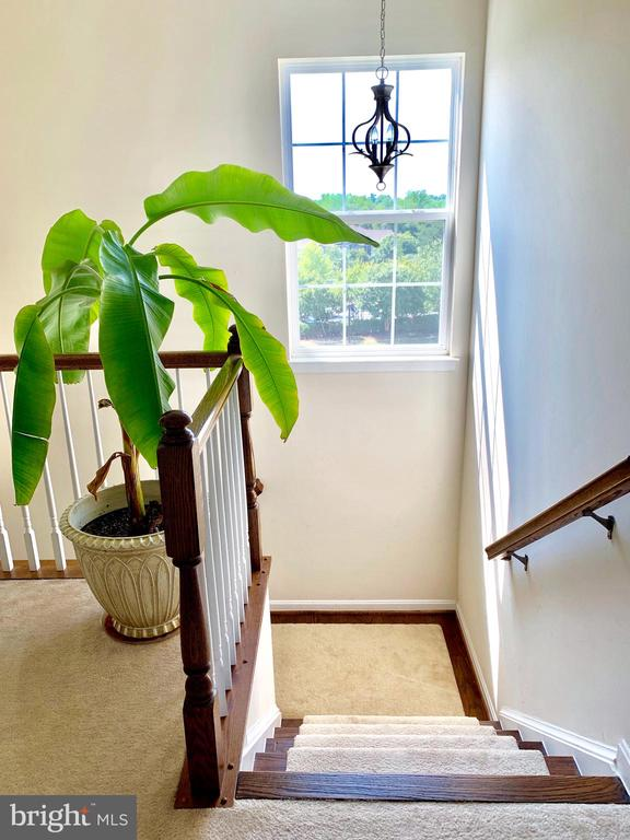 Stairwell on third level - 9009 BELO GATE DR, MANASSAS PARK